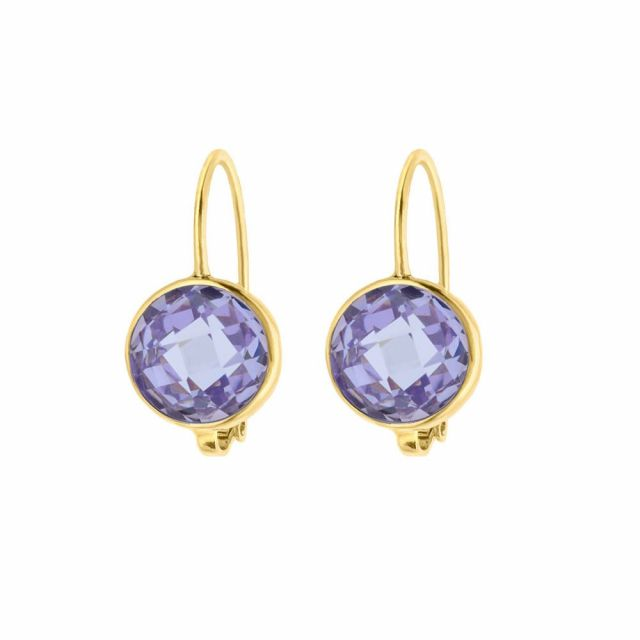 February Birthstone Color Earrings
