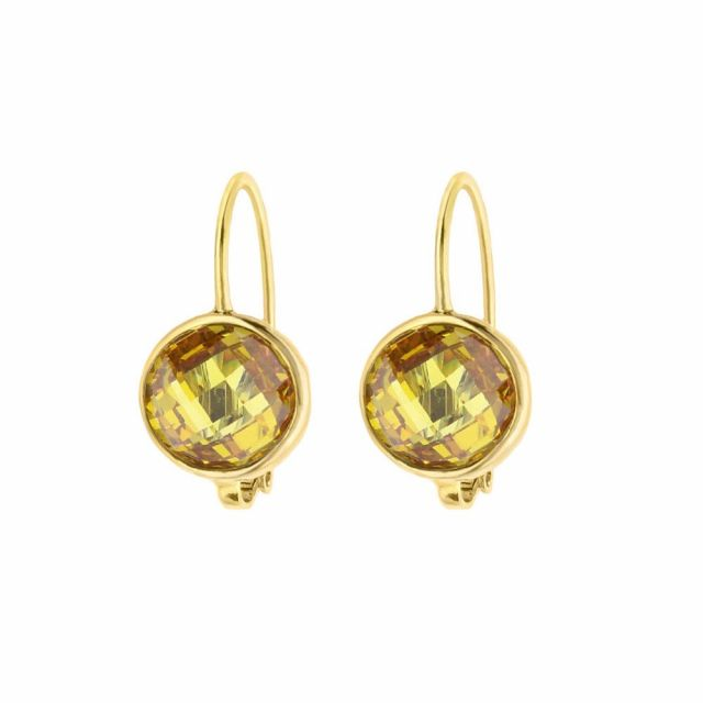 November Birthstone Color Earrings
