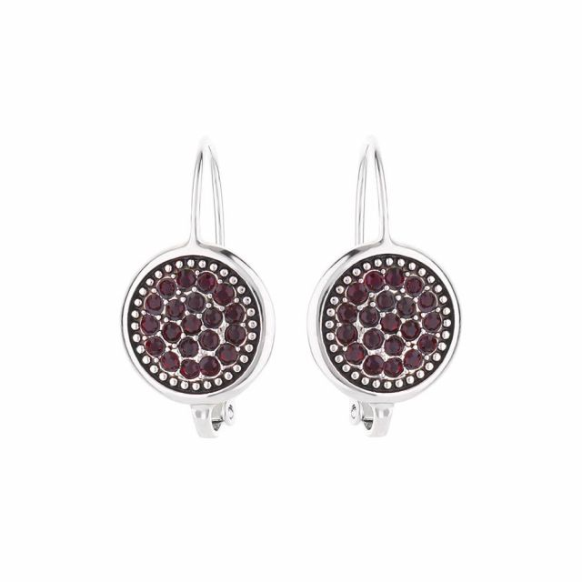 January Birthstone Color Earrings