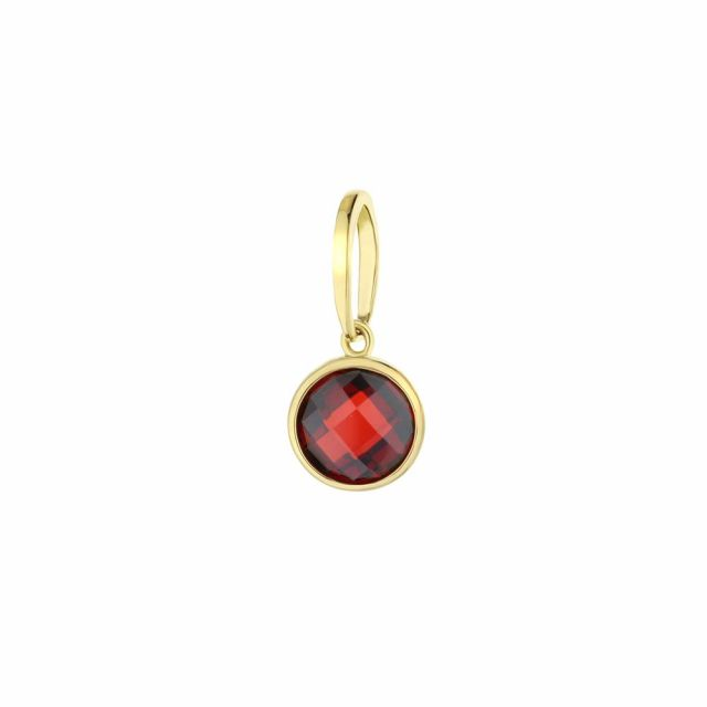 January Birthstone Color Pendant